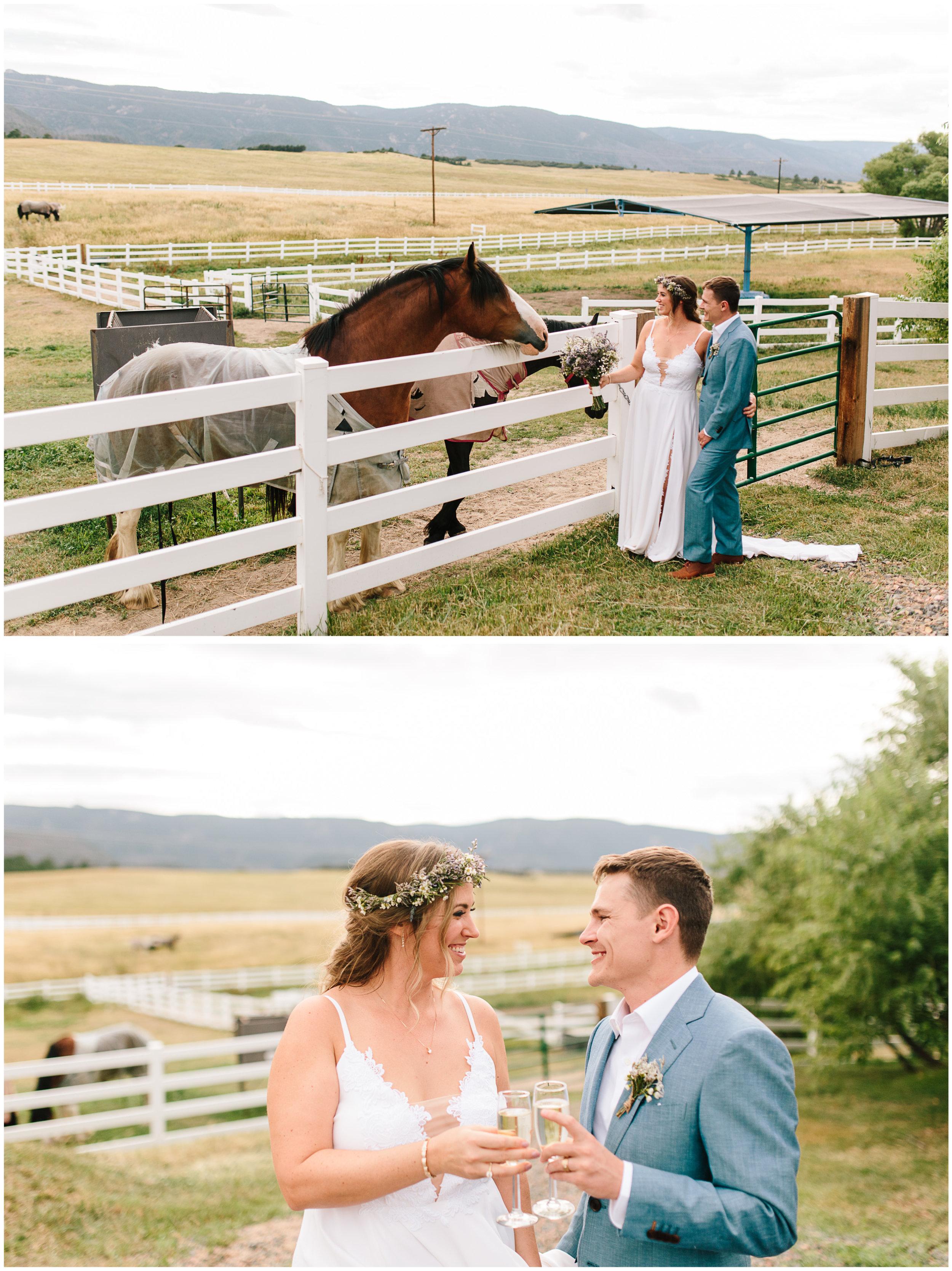 crooked_willow_wedding_44.jpg