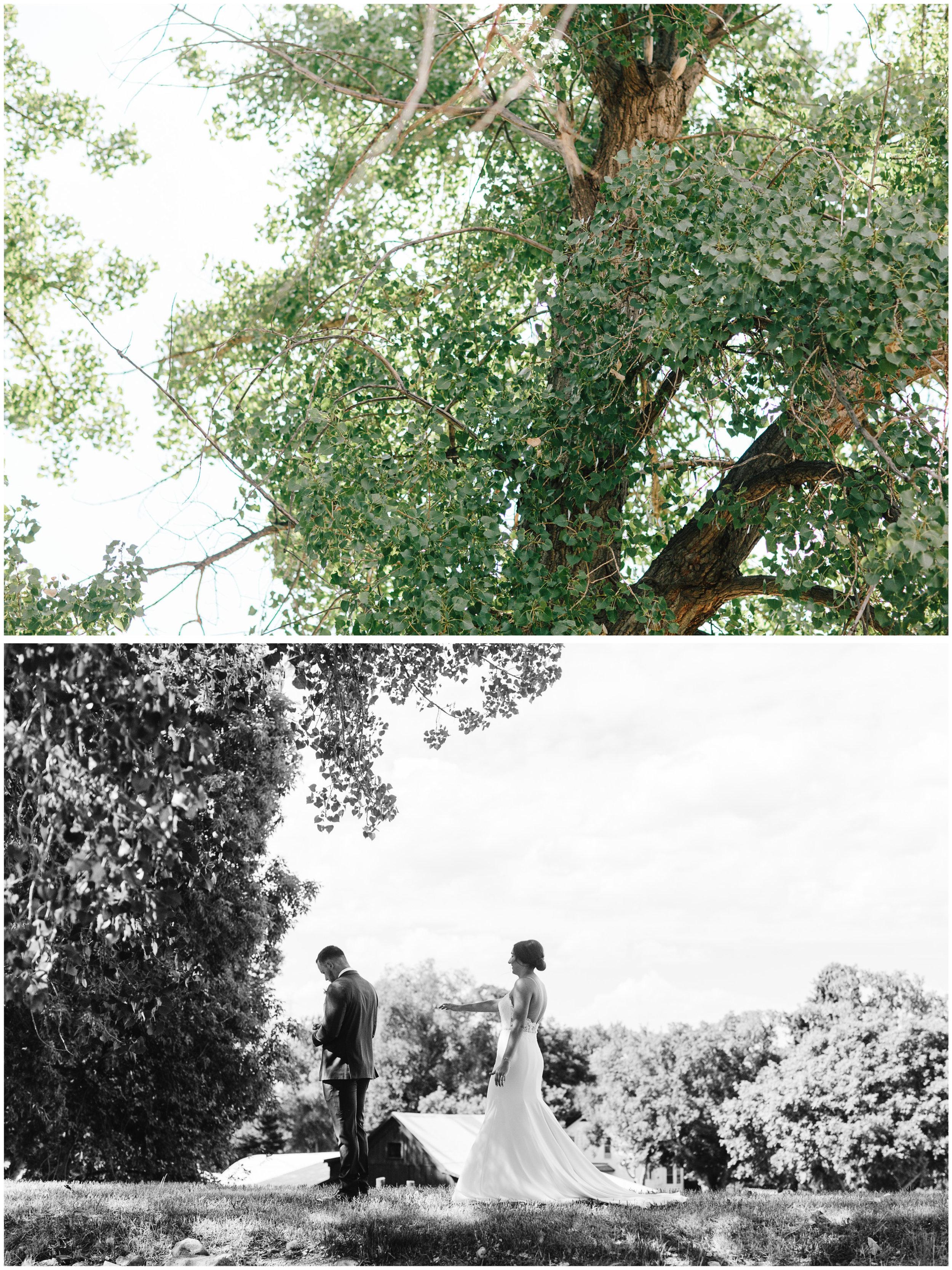 Morrison_Colorado_Wedding_23.jpg