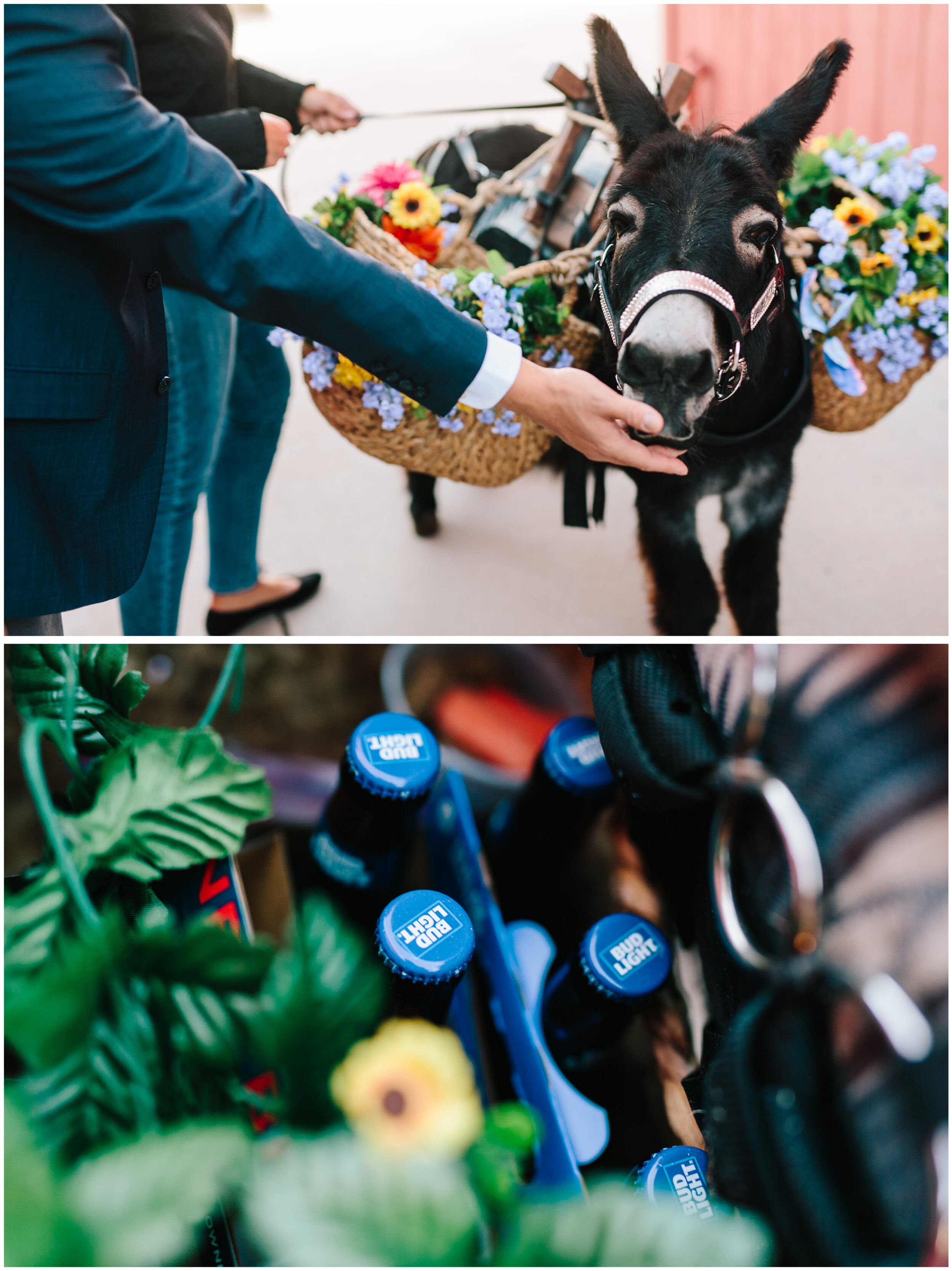 larkspur_colorado_wedding_53.jpg