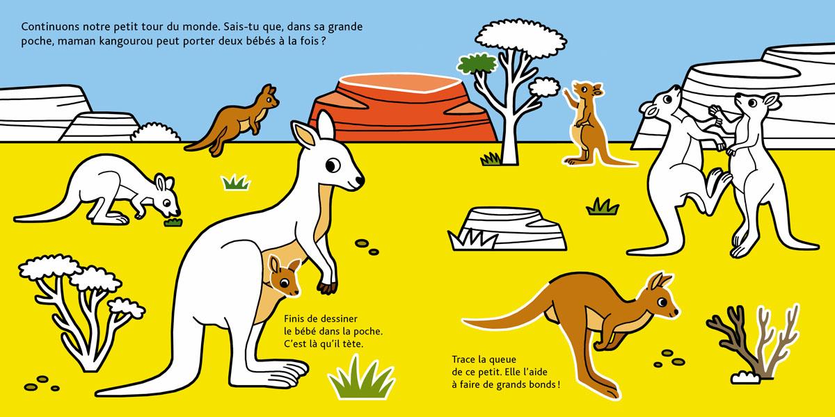 BEBES_ANIMAUX kangaroos.jpg