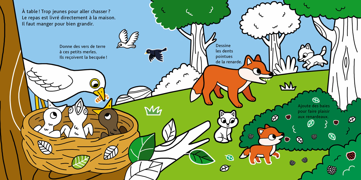 BEBES_ANIMAUX foret.jpg