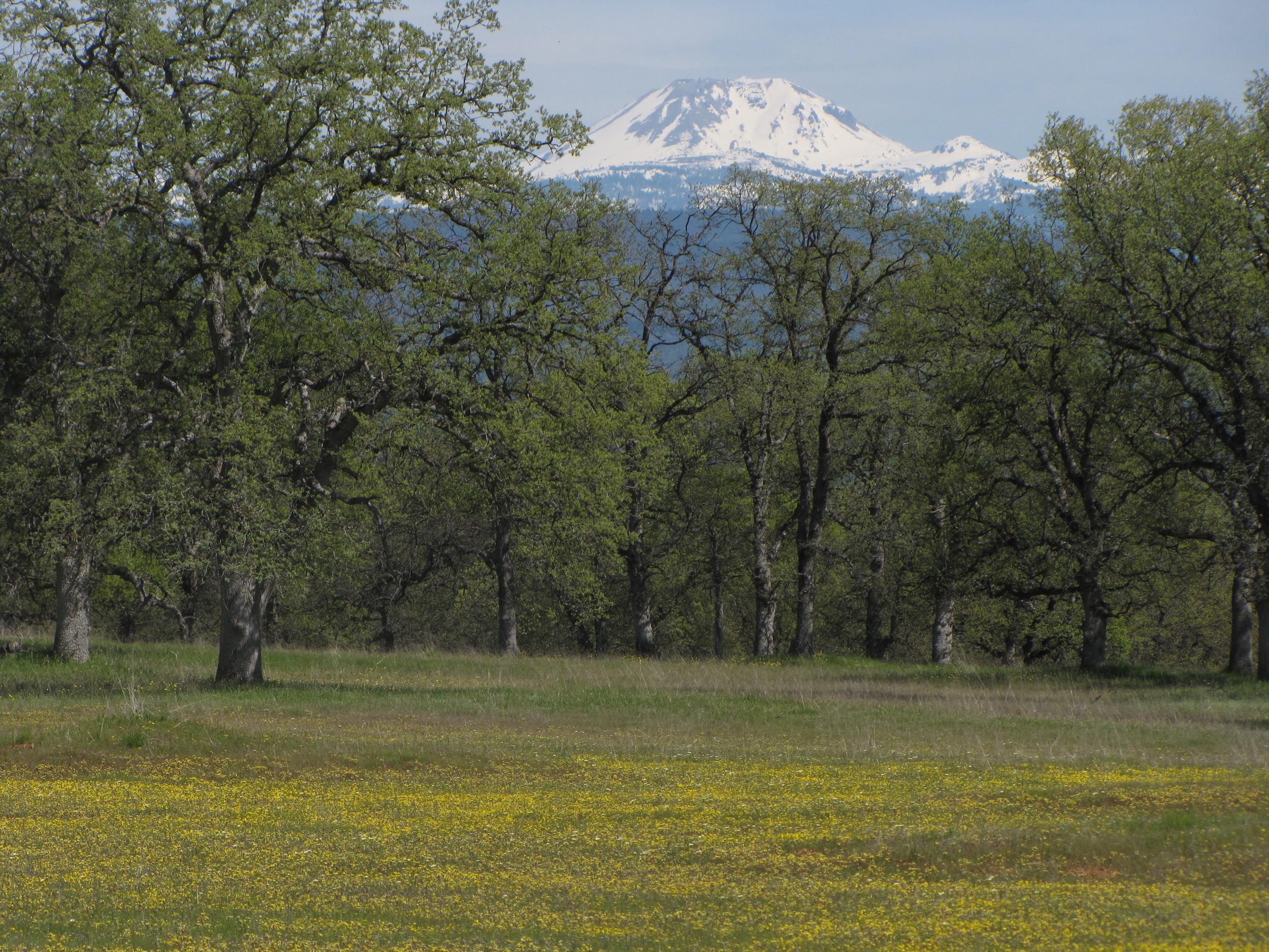 Fenwood Ranch