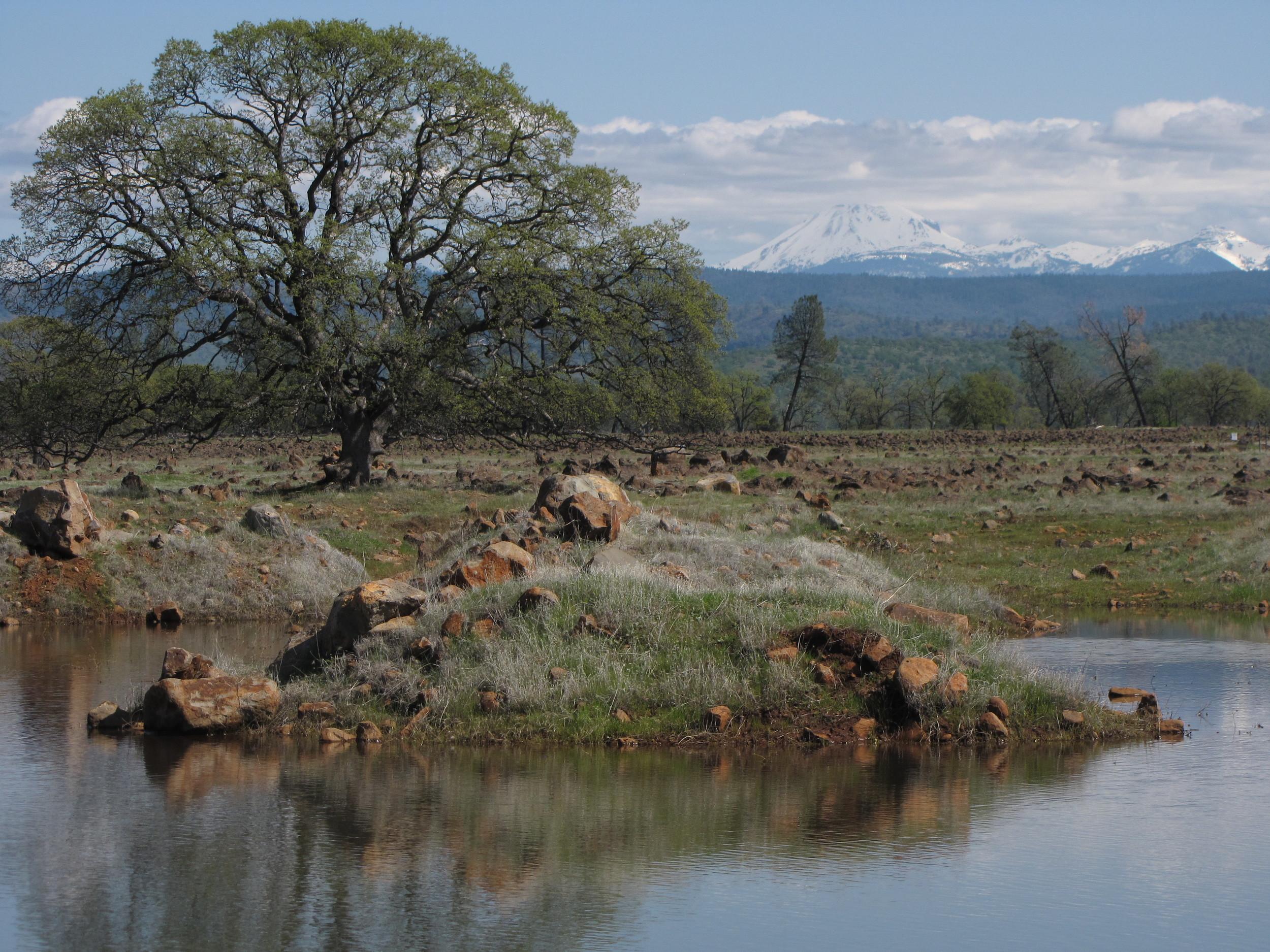 Triple B Ranch
