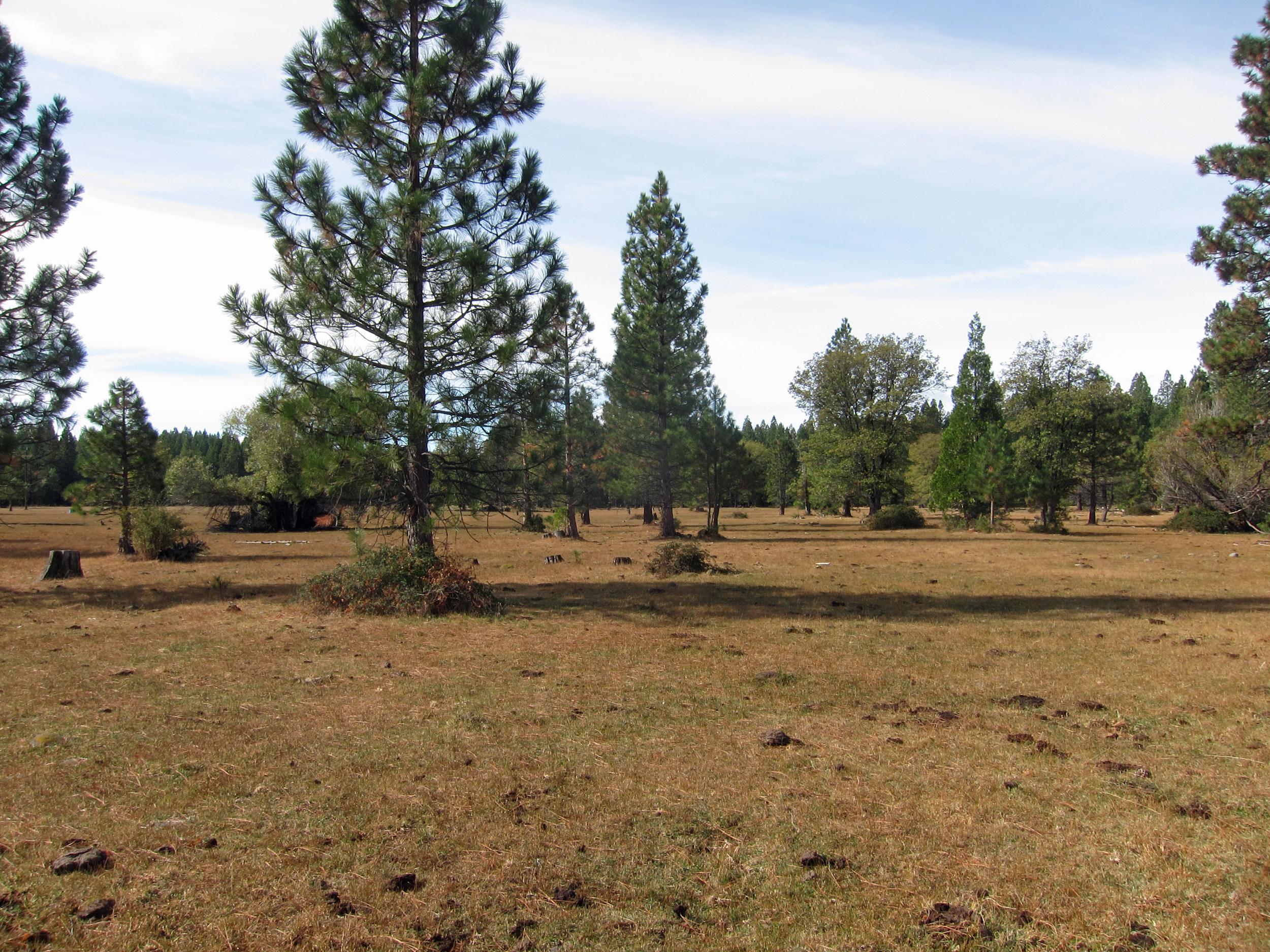 Hootman Ranch