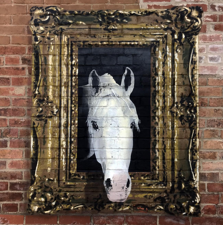 white_horse_close_up.jpg