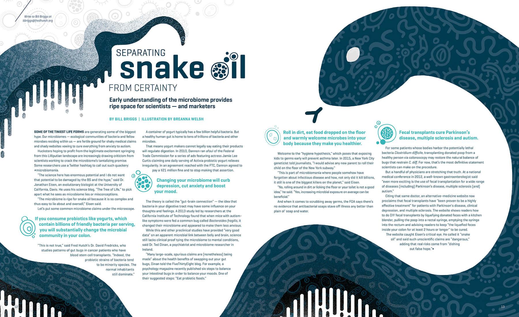 Illustration & spread design