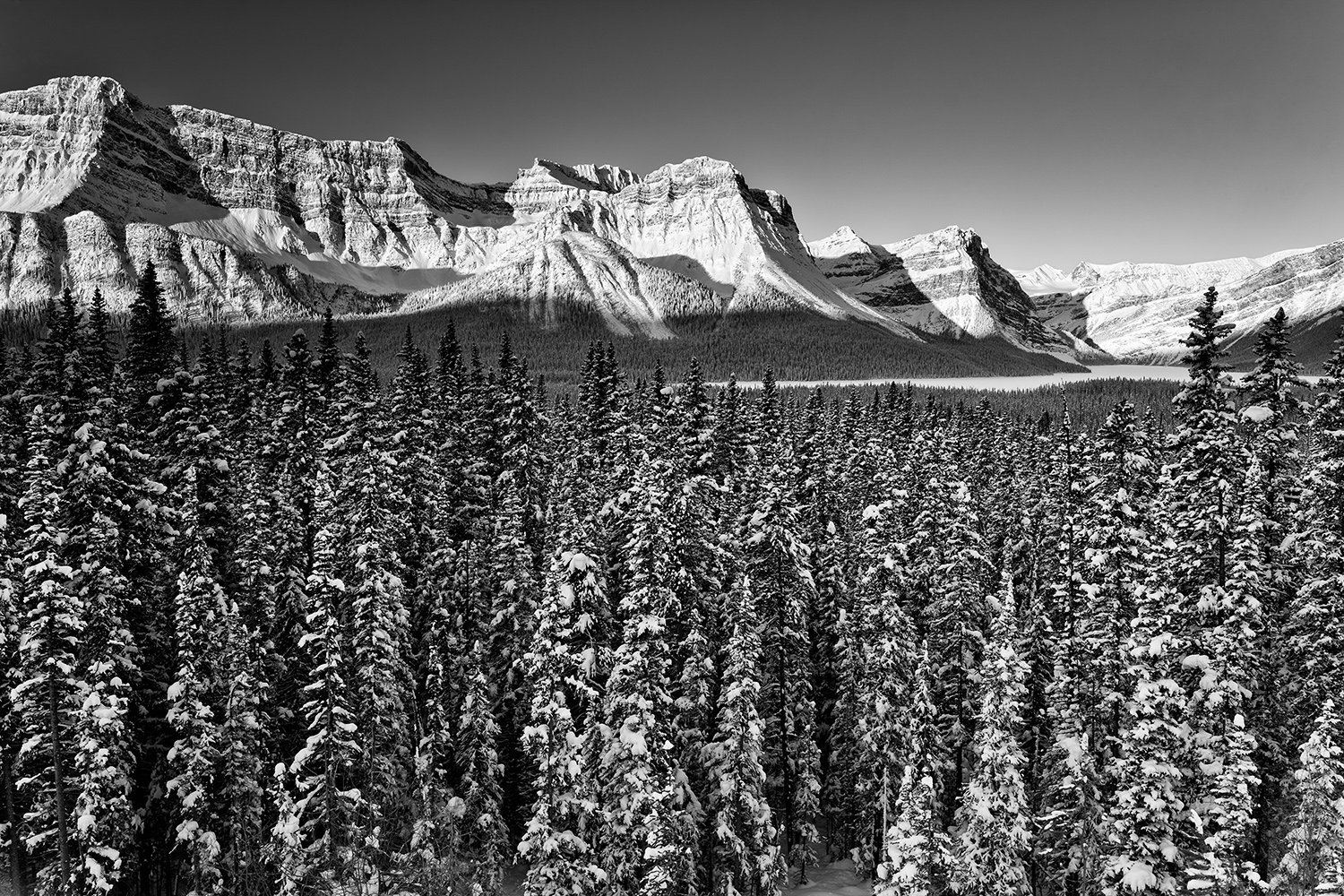 _I4A6625 copy (1)   SEP us mf Icefields Parkway, Jasper NP.jpg