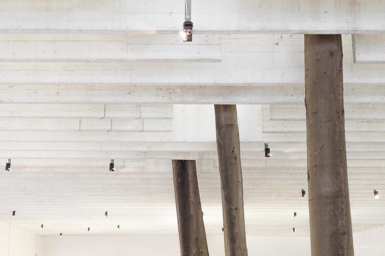 Roof detail, Nordic Pavillion