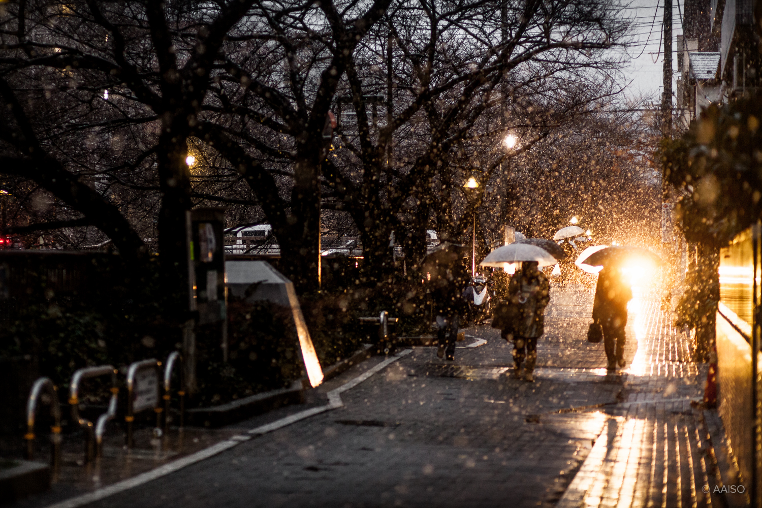 Pedestrians in the snow, along the Meguro River