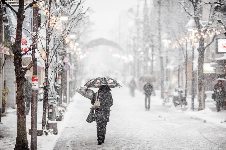 winterintokyo8384.jpg