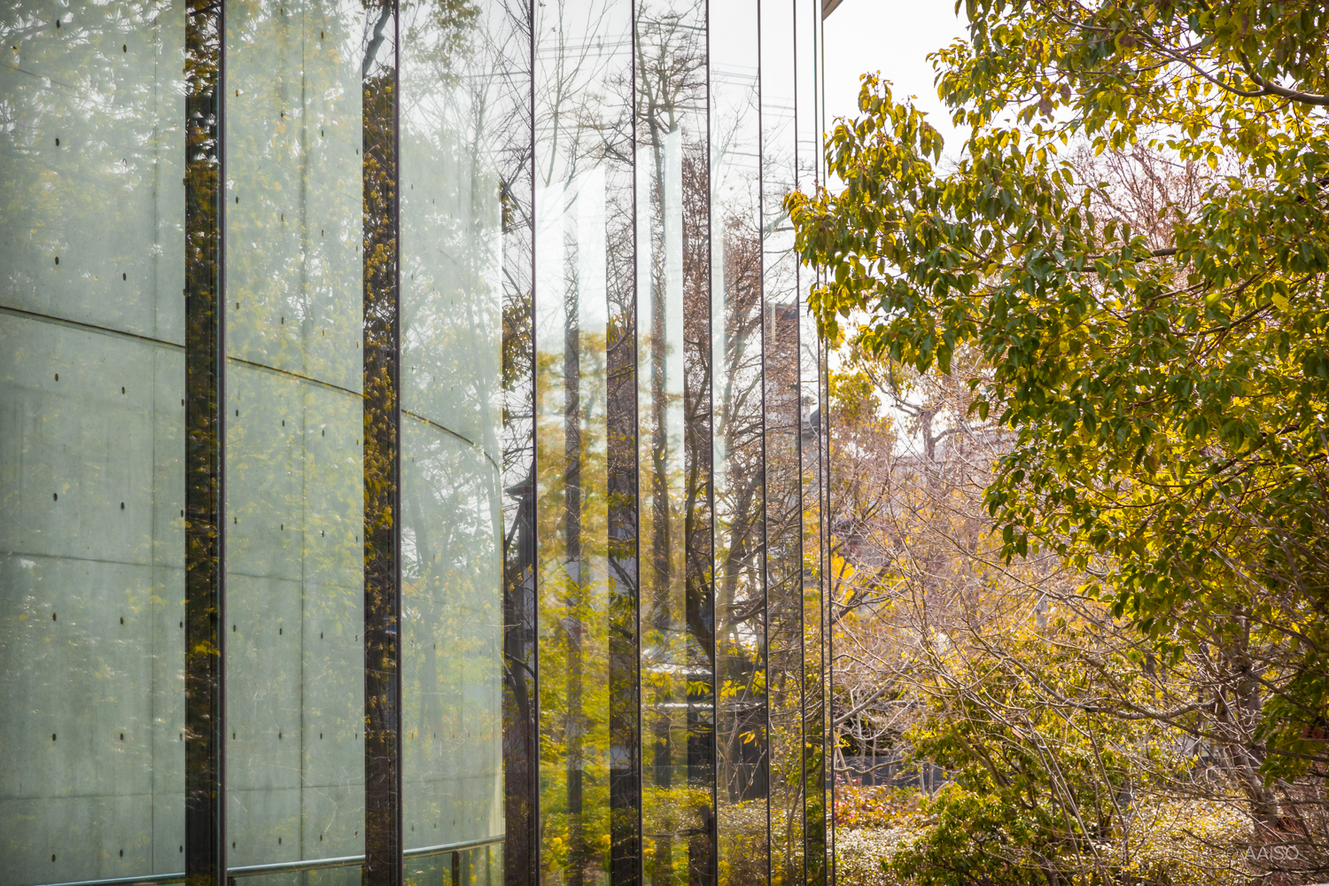 Glass Facade, Shiba Ryotaro Memorial Museum in Osaka, by Tad