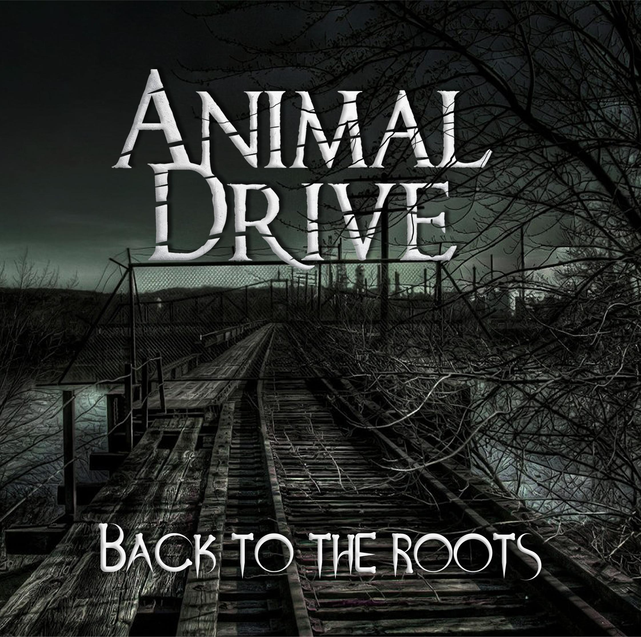 Animal Drive.jpg