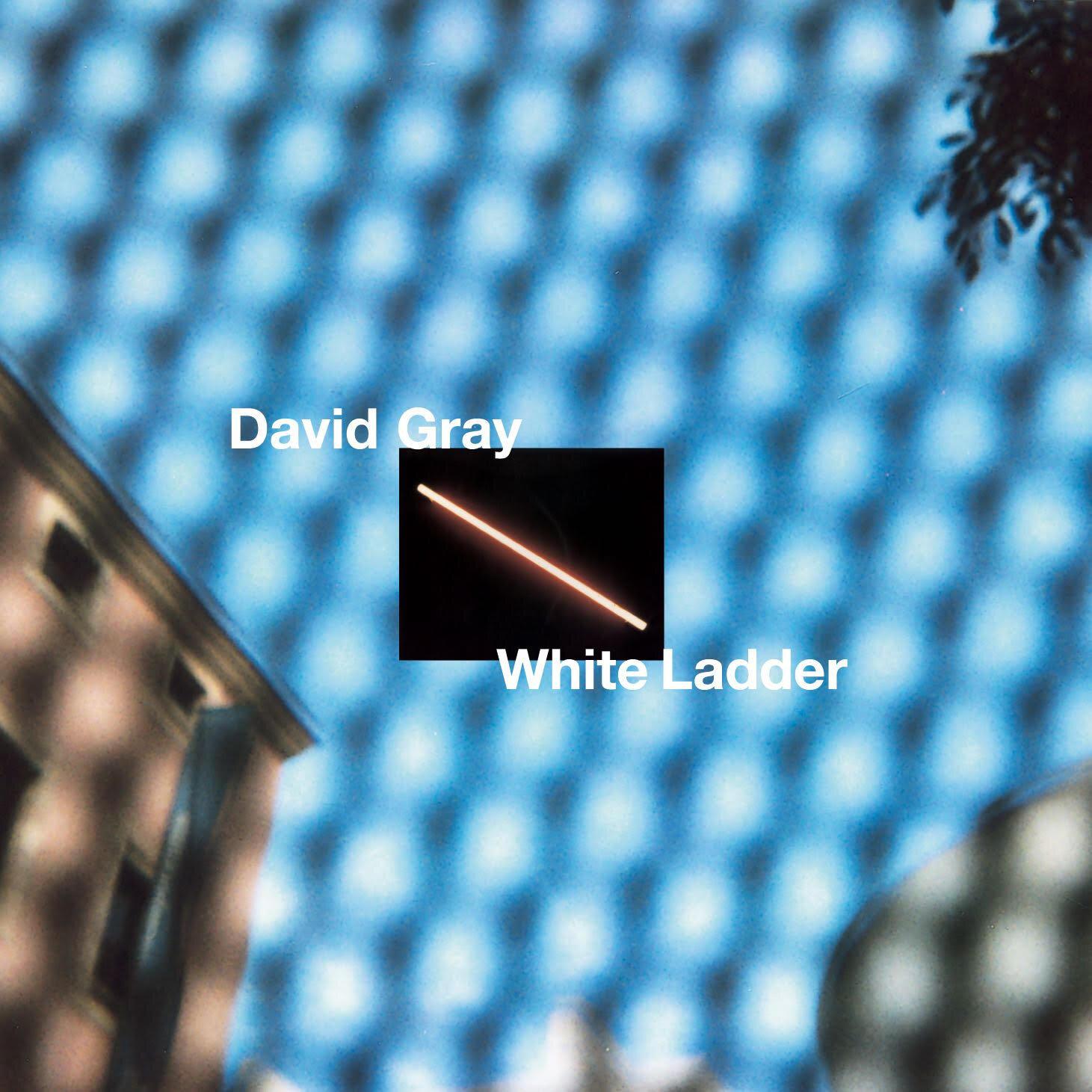 David Gray.jpg