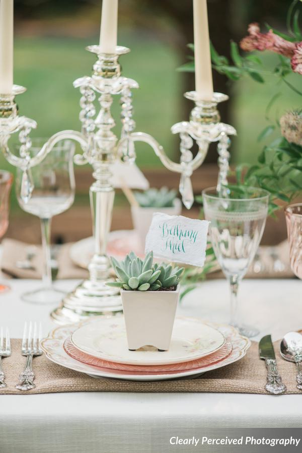 __ClearlyPerceivedPhotography_RomanticGardenParty_008_0_low.jpg