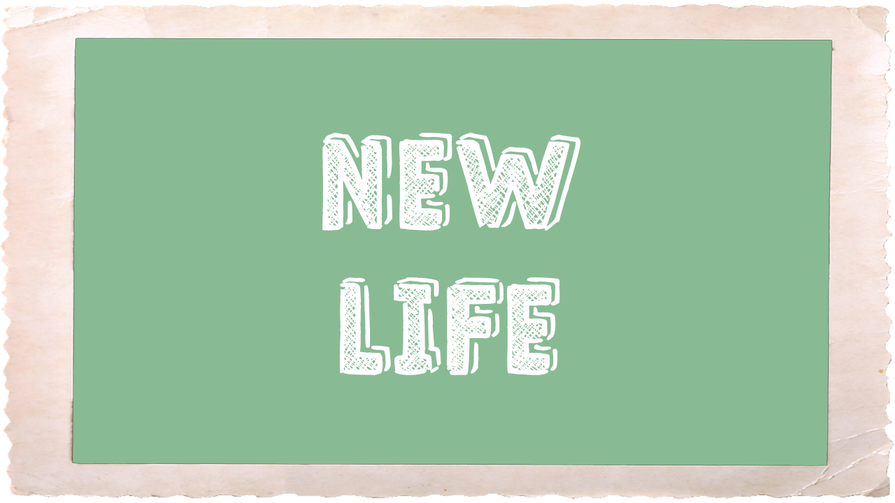 New Life_Frame.png