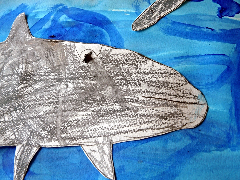 dolphin.close2.jpg