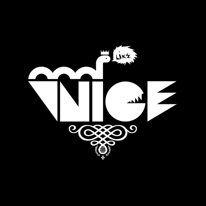 VNICE.png