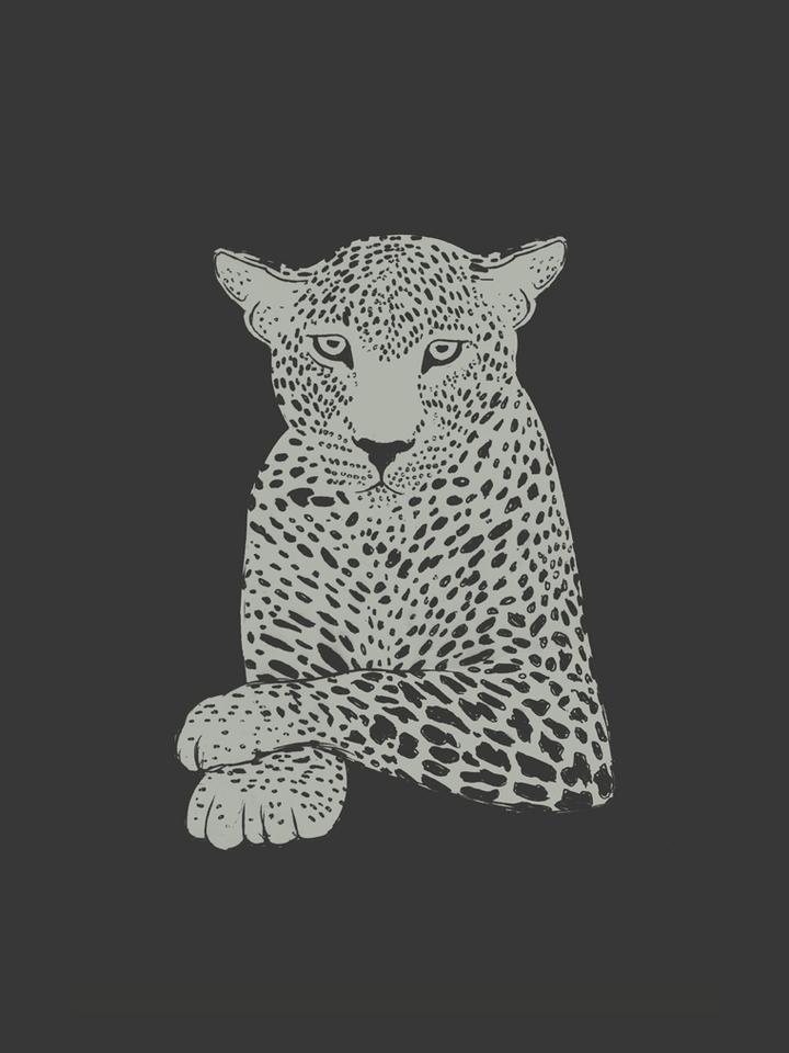 LeopardCalm_01.png