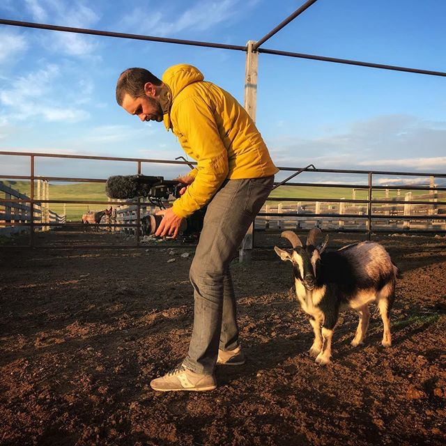 Does it look like I goat time for you to check your white balance 📷: @katy_robin_garton #onlocation #goatpuns #crewlife #ranchlife #montanamoment