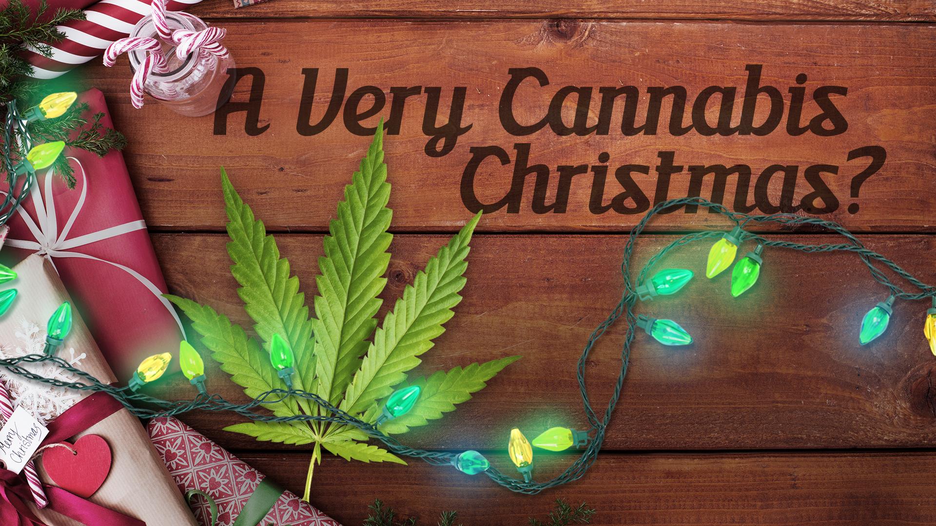 20920453_FM_MONITOR_PLASMA_A _Very_Cannabis_Christmas.png