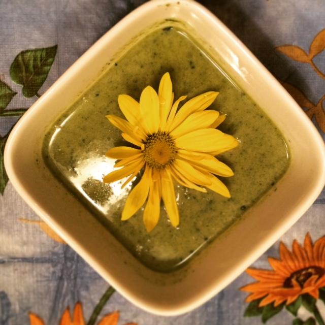 garden spring soup recipe