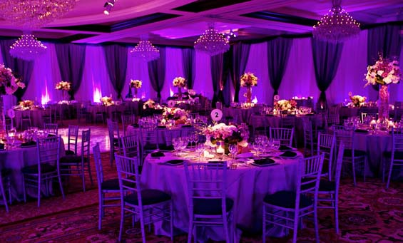 My Hotel Wedding