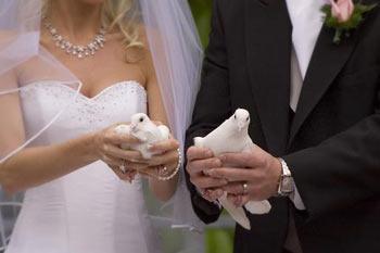 Best Wedding NJ