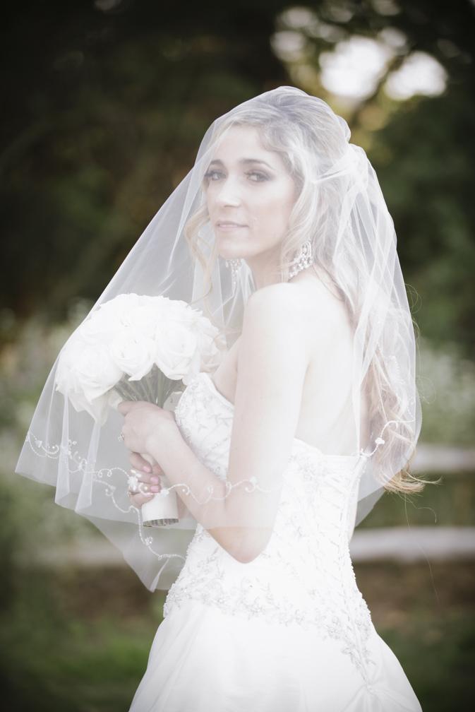 bride veil portrait