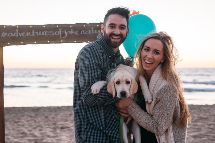 cutest marriage proposals with puppies