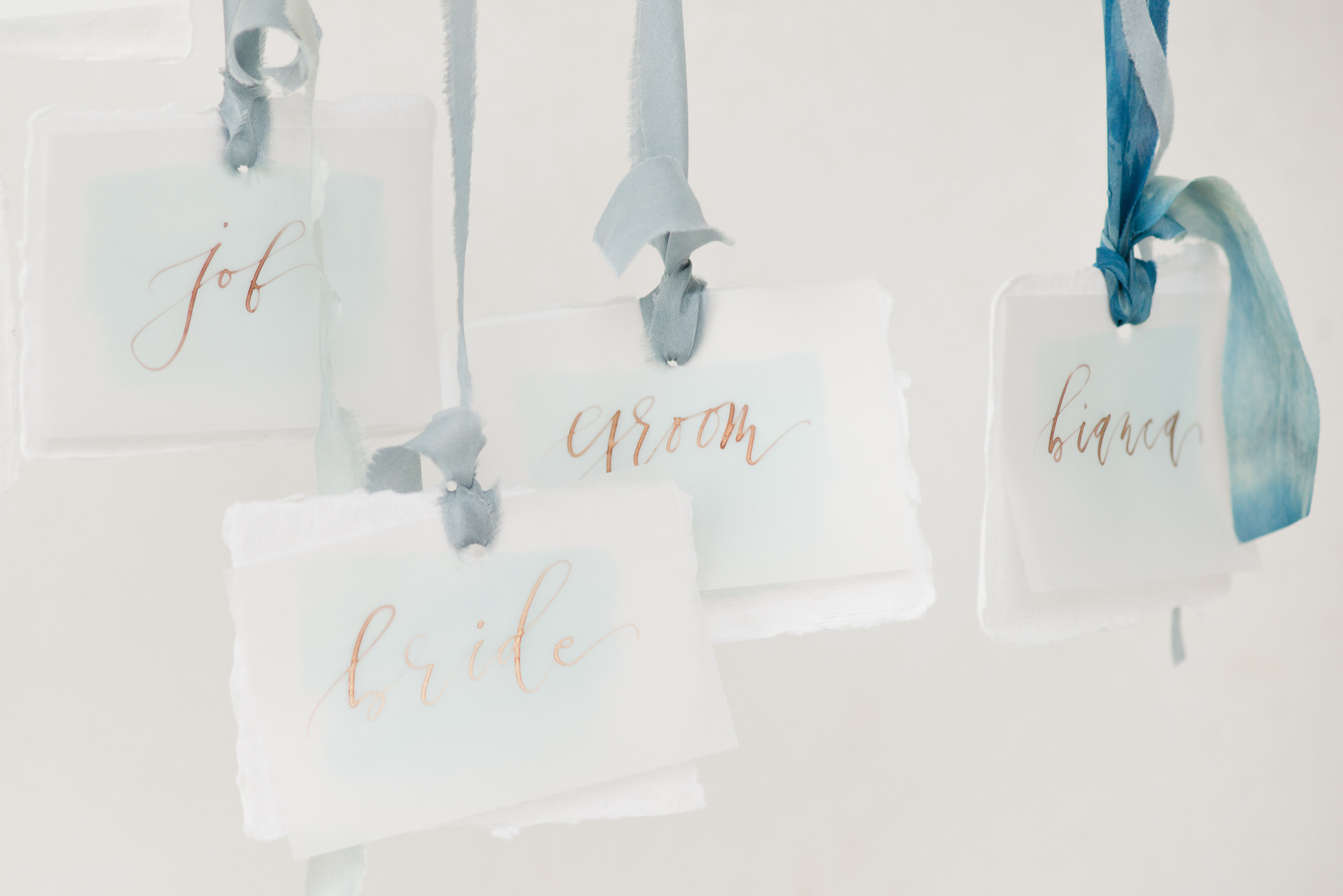 Unique Wedding Seating Cards - Blue and Gold Morven Park Styled Virginia Wedding -- JOFFOTO