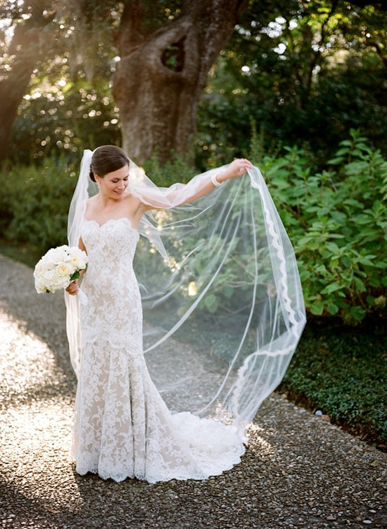 Lace Rimmed Cathedral Length Long Bridal Veil