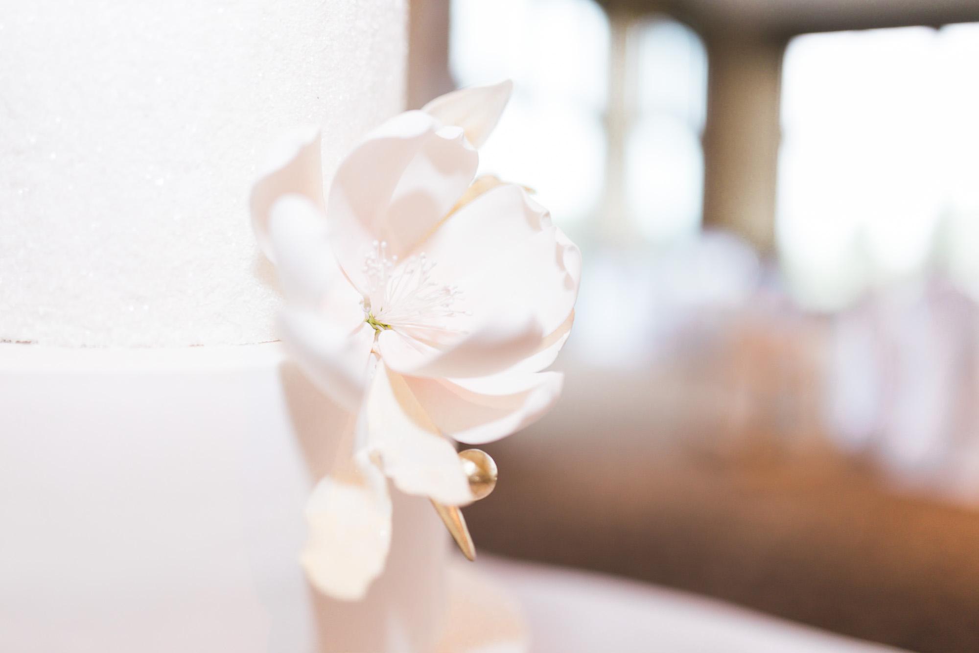 Joanne-Vincent-Wedding-0907.jpg