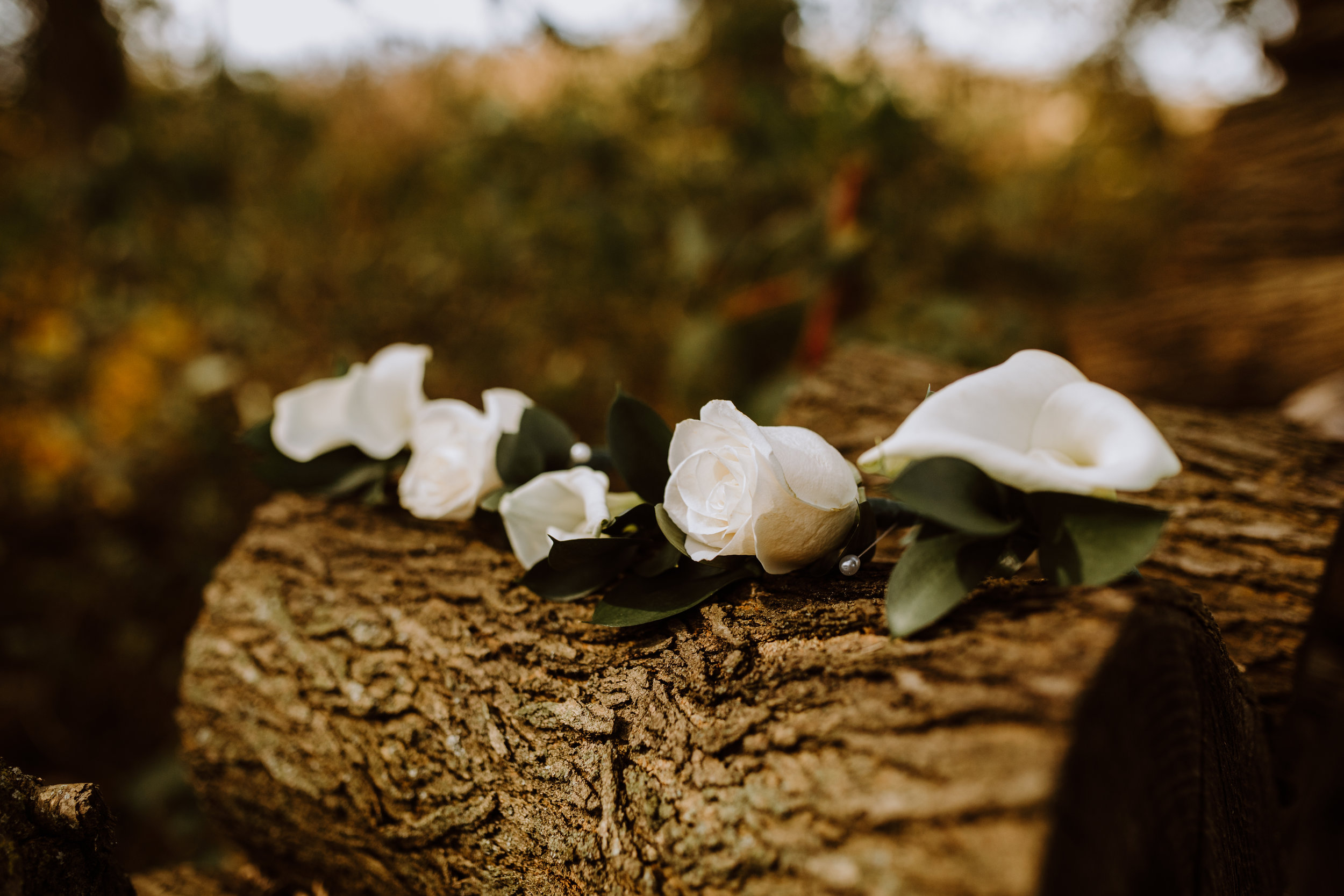 White Boutonniere - A Pennsylvania Barn Swallow Farm Wedding