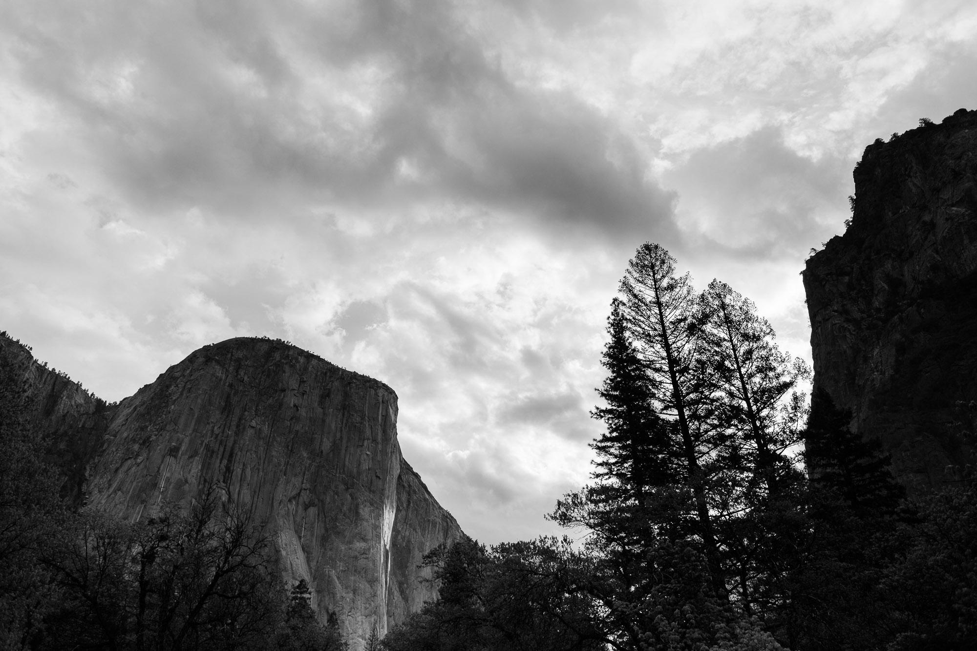 A Springtime Yosemite Wedding