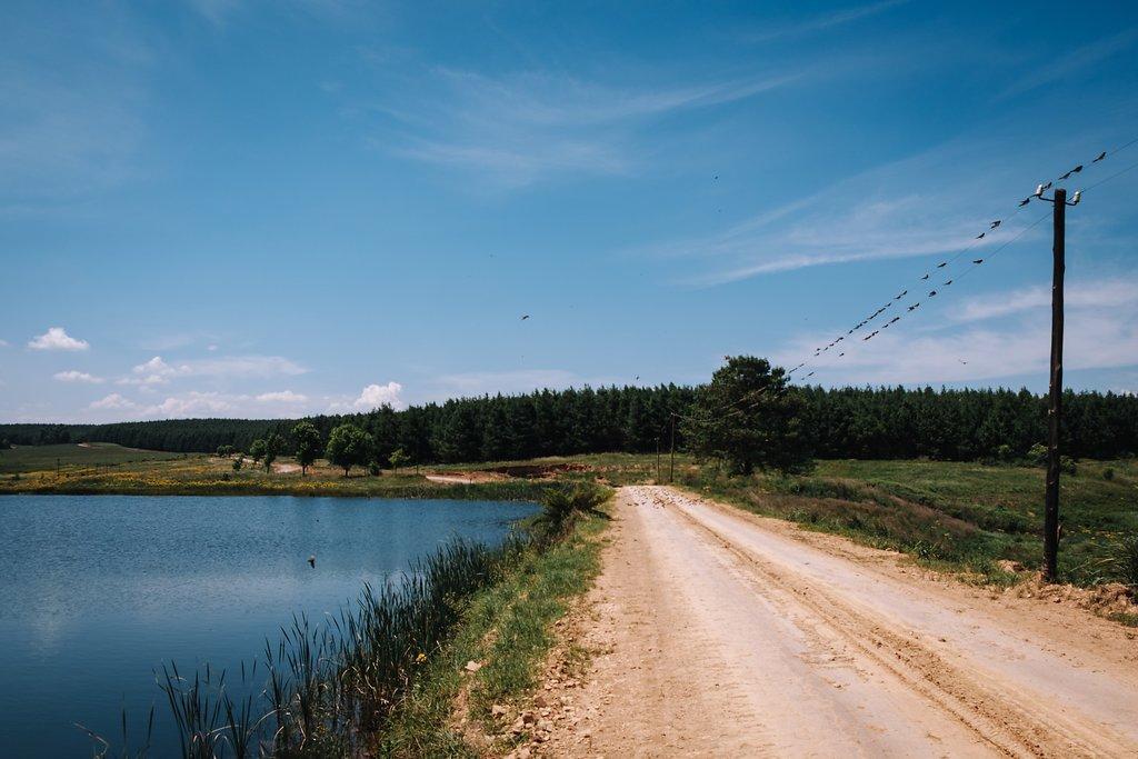 Farm-Forest Wedding - The Overwhelmed Bride Wedding Blog