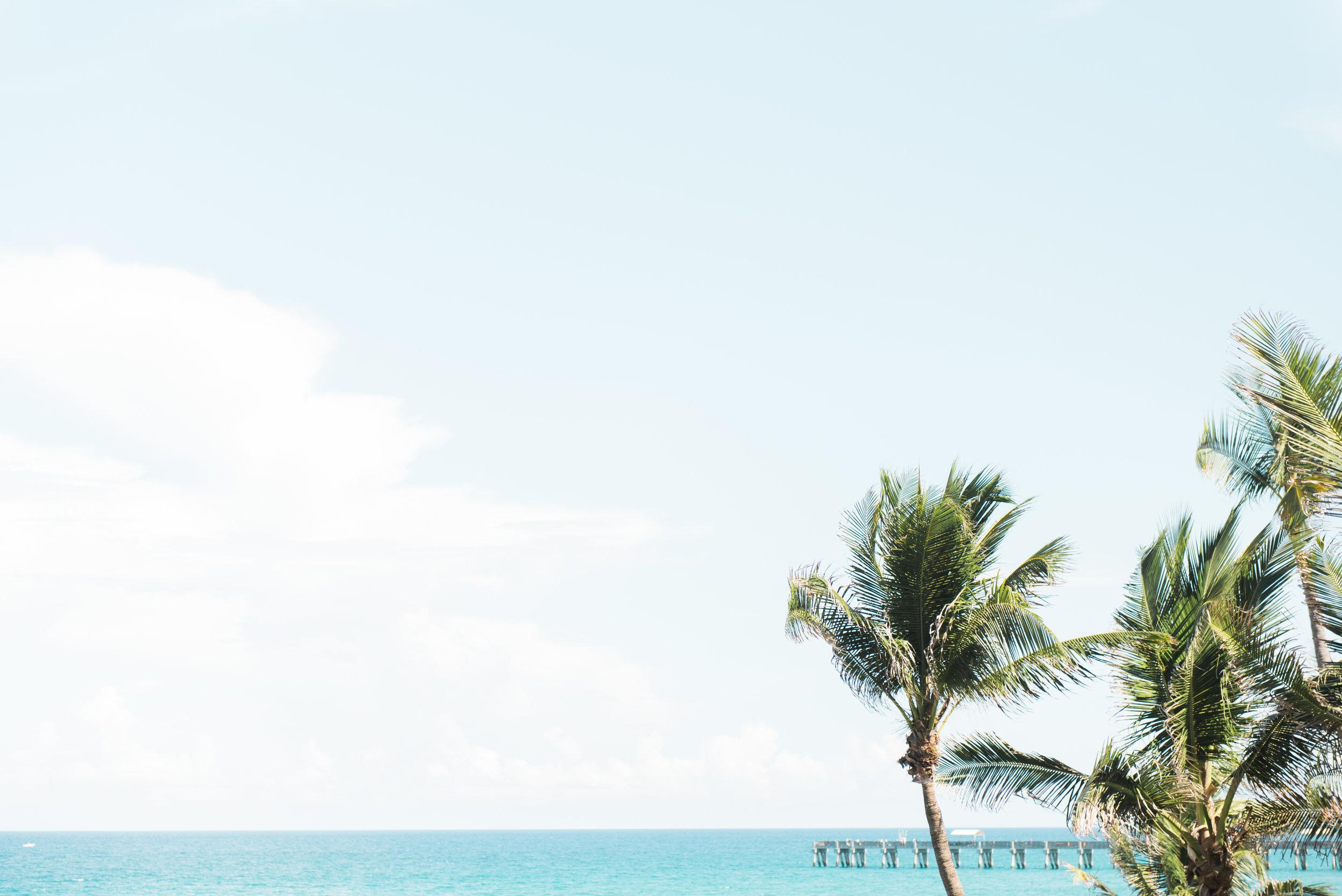 Flagler Museum Palm Beach Wedding Venue - The Overwhelmed Bride Wedding Blog