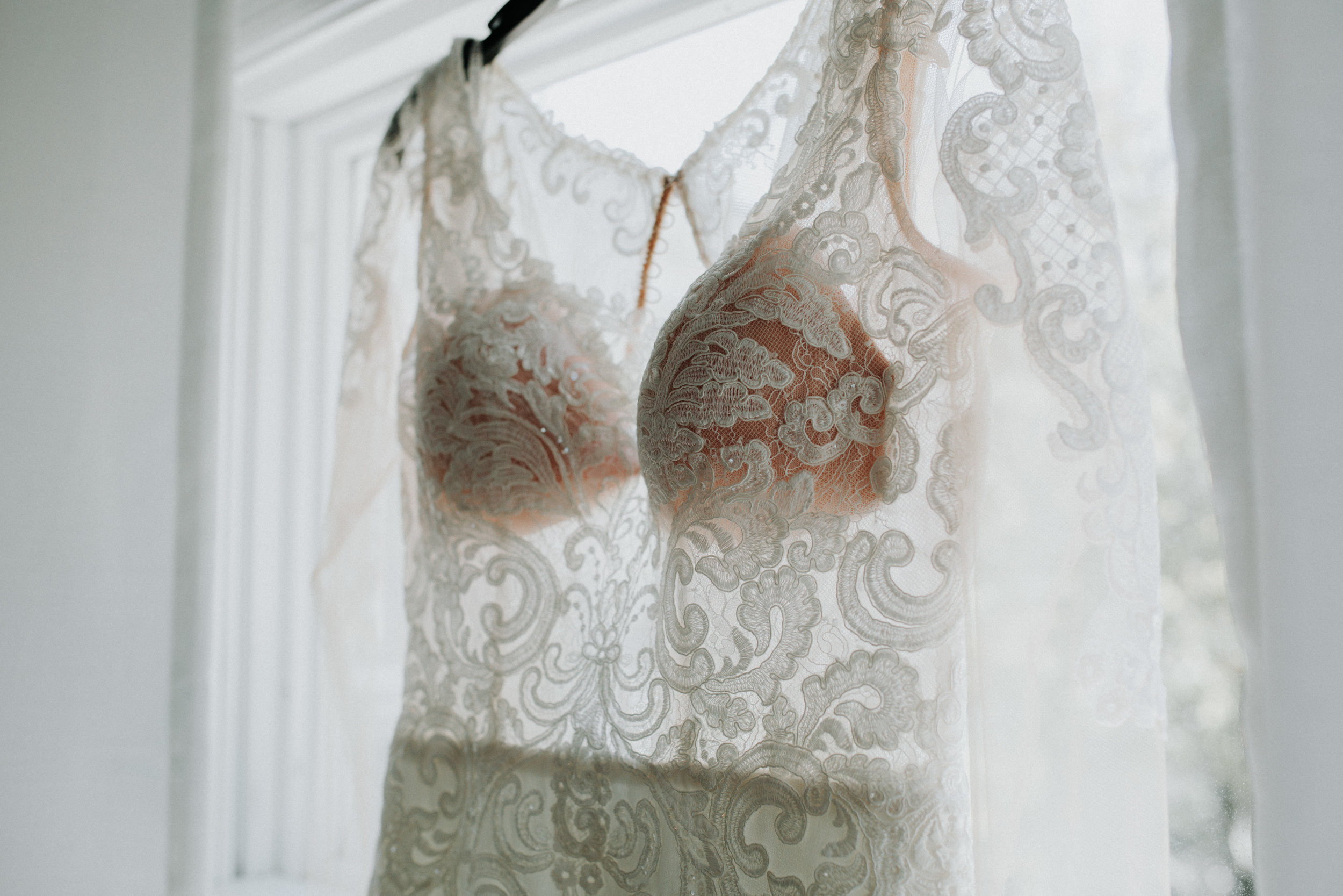 Gorgeous Lace Wedding Dress - Dara's Garden Knoxville East Tennessee Wedding — The Overwhelmed Bride Wedding Blog