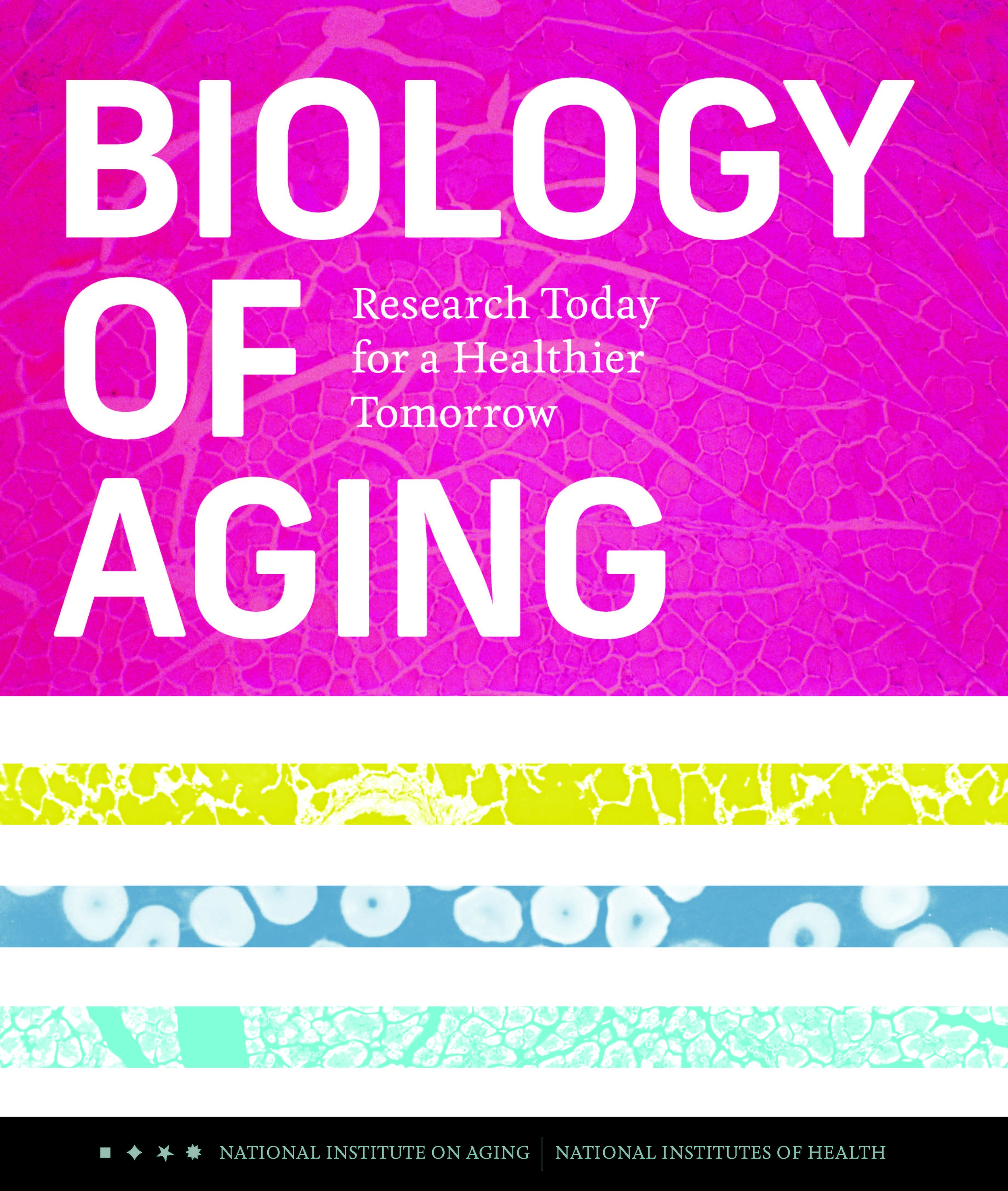 biology-of-aging