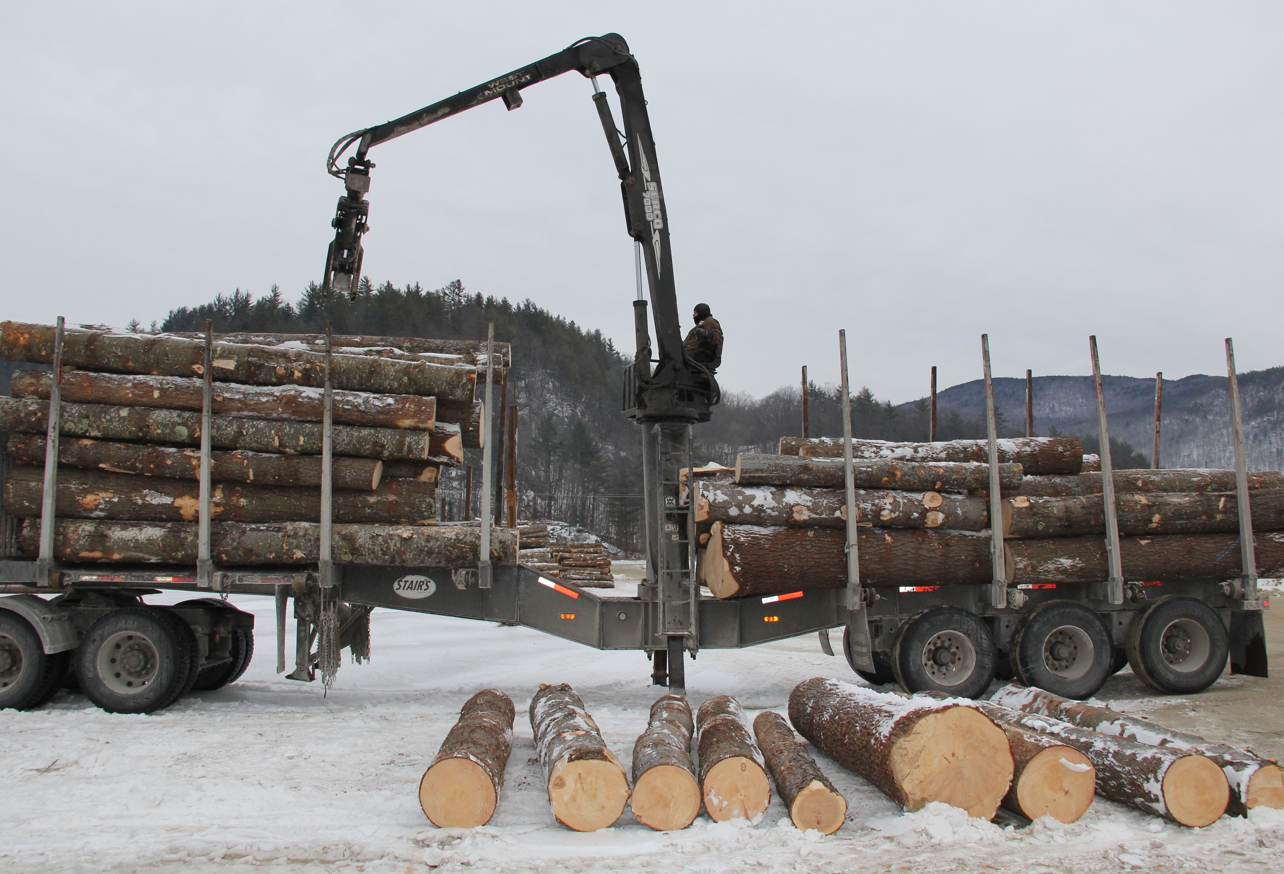 The business of moving logs.jpg
