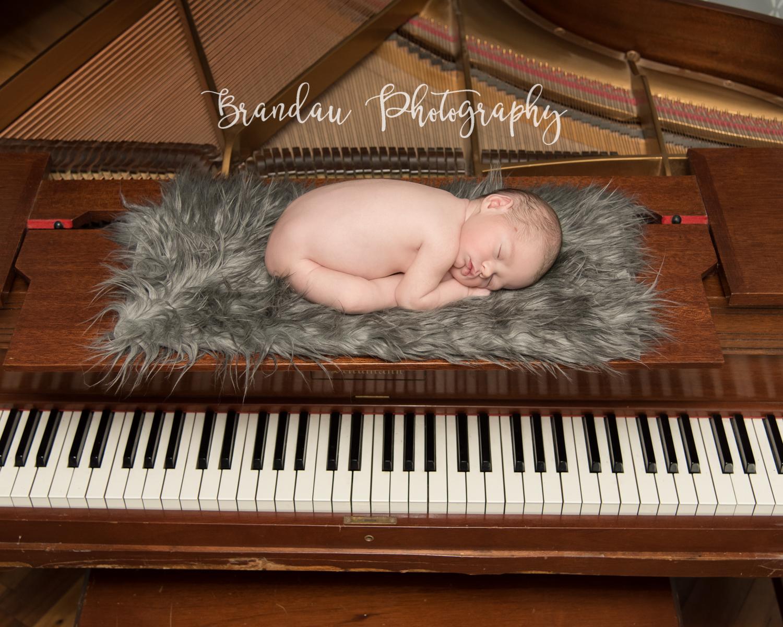 Brandau Photography - Central Iowa Newborn 050816-1.jpg