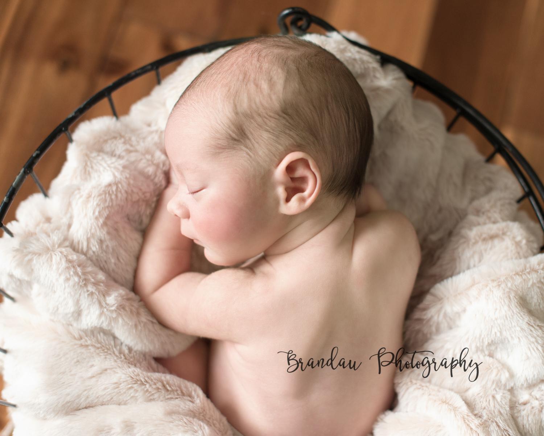 Brandau Photography - Central Iowa Newborn 050816-3.jpg