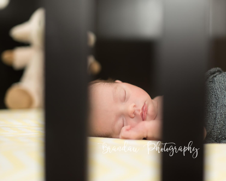 Brandau Photography - Central Iowa Newborn 050816-20.jpg