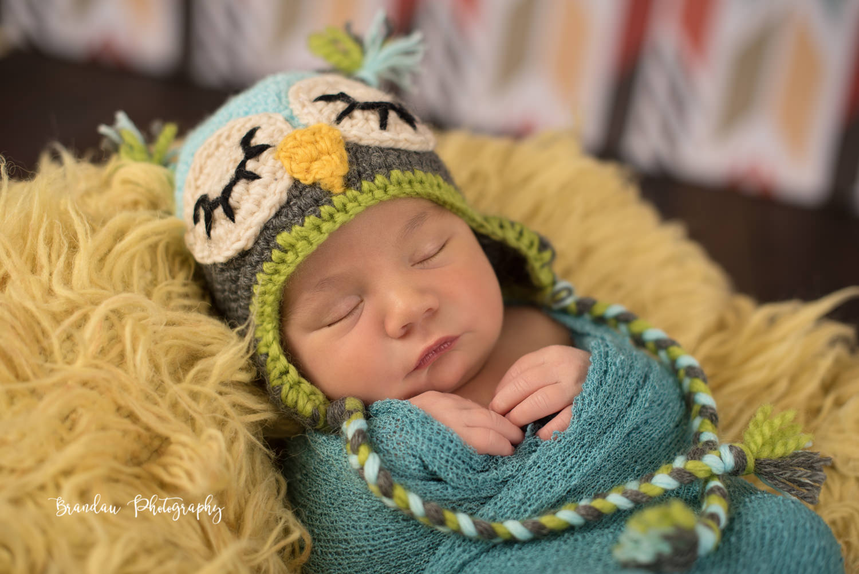 newborn owl hat_Brandau Photography.jpg
