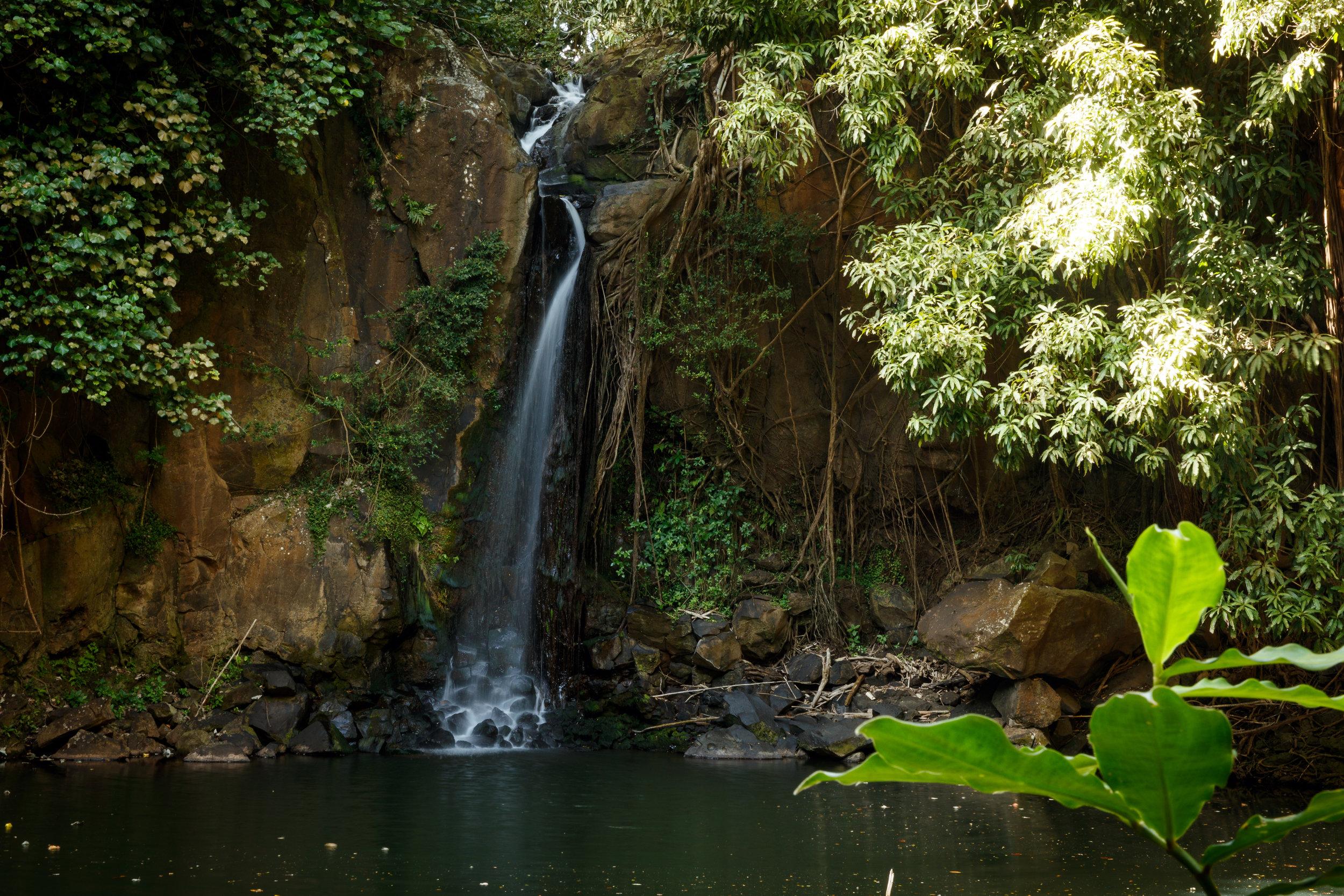 Waterfall wedding kauai