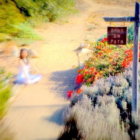 Stay on Path.jpg