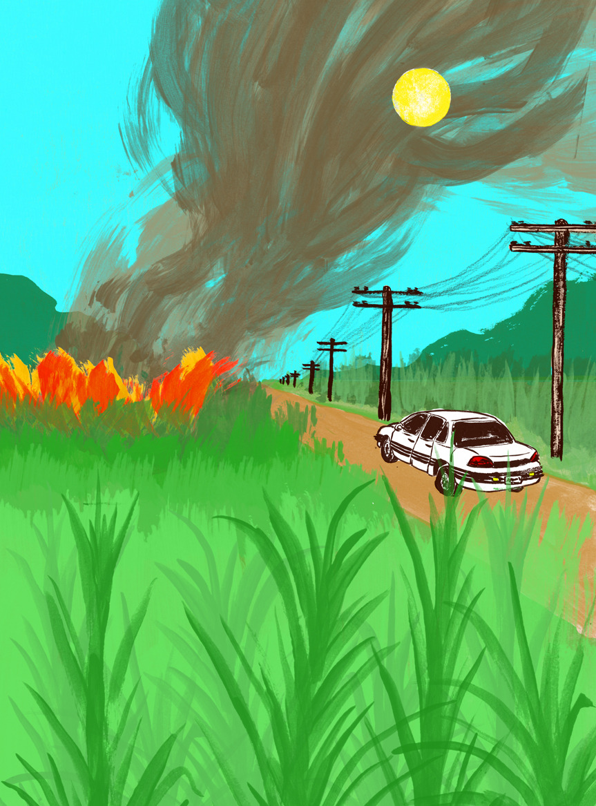 Here is my latest illustration for  Honolulu Magazines , Afterthoughts section for the month of March. The illustration is about how normal and nostalgic sugar cane fires are in certain parts of Hawaii. People often move to these parts of Hawaii because of how lush the cane fields are but are at first turned off by the fires which are done to help the following harvest. Art Direction by Erik Ries.