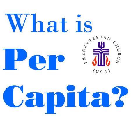percapita what is pcusa.jpg
