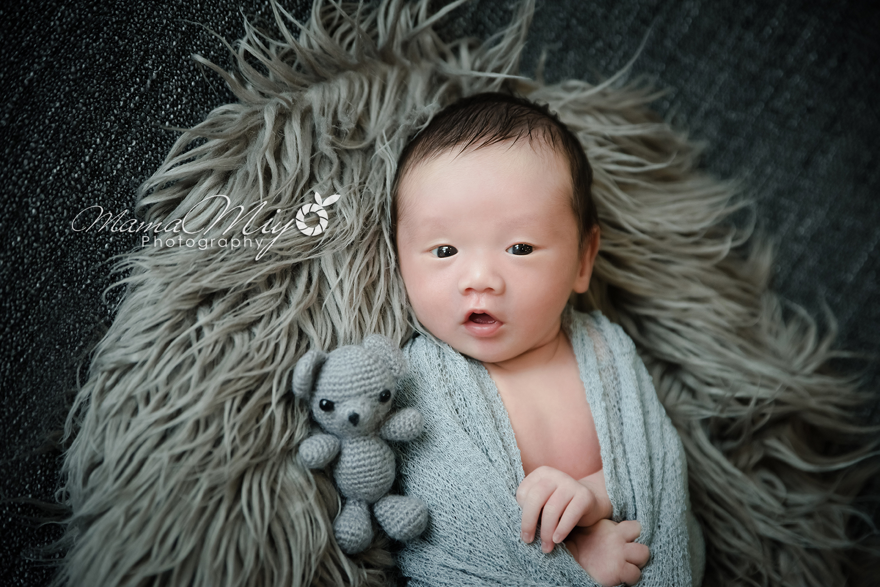 newborn photography singapore grey bear