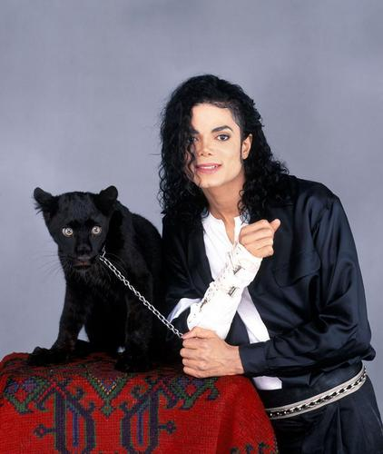 MJ-With-Young-Panther-Large-Photo-michael-jackson-10748629-422-500.jpg