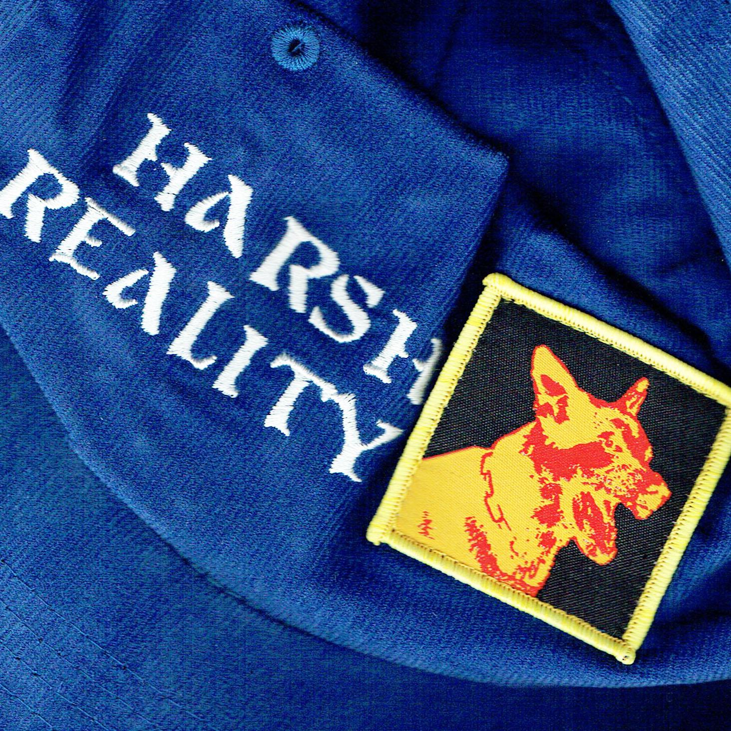 HARSH REALITY.jpg